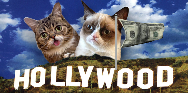 Hollywood Goes to the Cats!