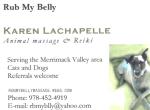 Rub My Belly Animal Massage & Reiki